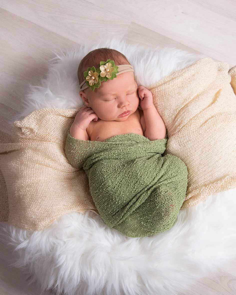 foto baby studio jember